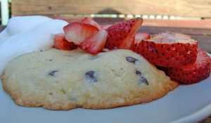 Strawberry (chocolate chip) shortcake