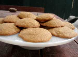 Cornmeal almond cinnamon cookies