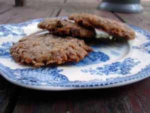 Pecan chocolate coconut cookies