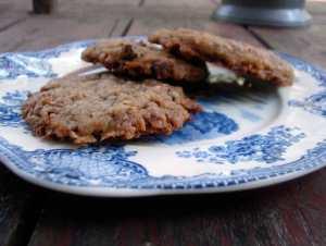 Pecan chocolate coconut cookies